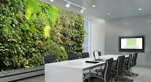 Không gian xanh cũng là một trong các thiết kế nội thất văn phòng đang rất HOT