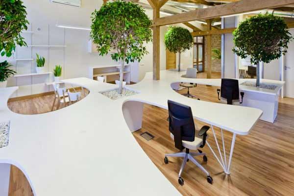 Xu hướng thiết kế nội thất văn phòng gần gũi với thiên nhiên