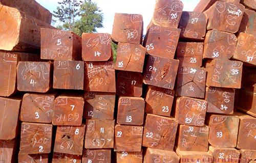 Ưu nhược điểm của bàn hội trường gỗ căm xe