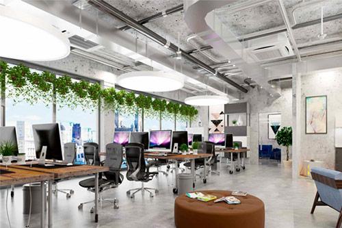Thiết kế văn phòng xanh, thông thoáng