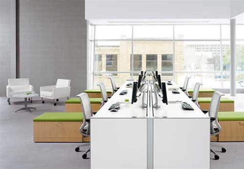 Bật mí cách thiết kế phòng làm việc nhân viên cho doanh nghiệp nhỏ