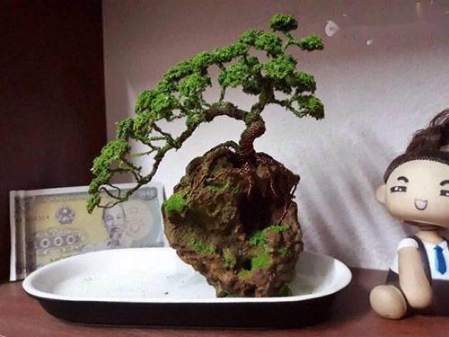 Sử dụng cây bonsai mini để bàn làm việc mang lại ý nghĩa gì?